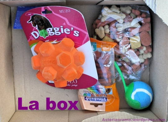 box-1_Fotor