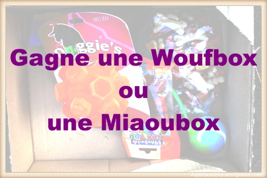 concours-box